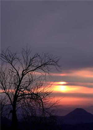 梦见爬山看日出,好事就要降临了