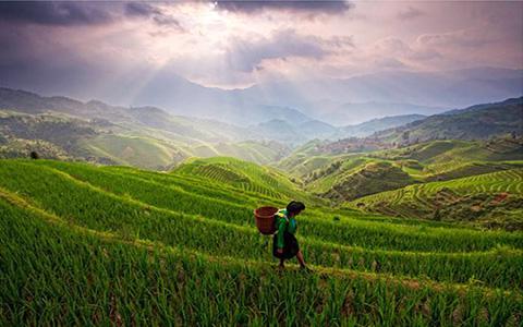 寻访茶王之乡——安化茶马古道