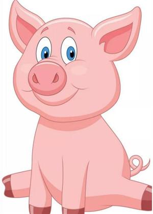 属猪的本命年能戴猪吗?有什么讲究?