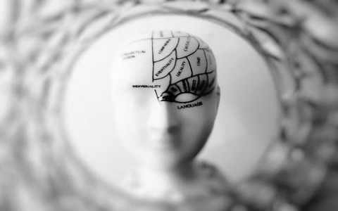 你的大脑灵活度如何?脑袋生没生锈一测便知