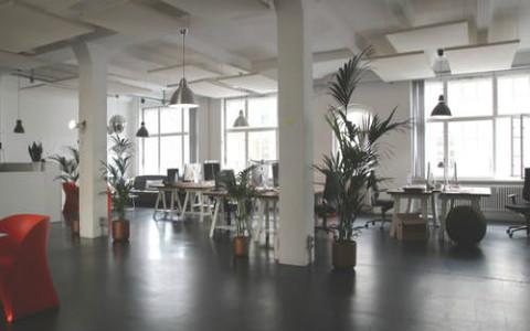办公室财位如何提升?从提振生气开始着手