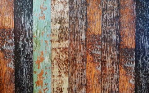 五行属木的生肖有哪些?属木人有怎么的性格表现?