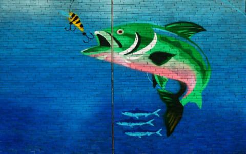 盘点有益家居风水的观赏鱼,红白锦鲤能旺财