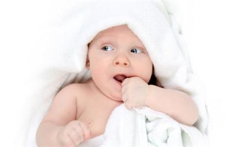 2020年鼠宝宝备孕时间表,不要错过了最佳时机