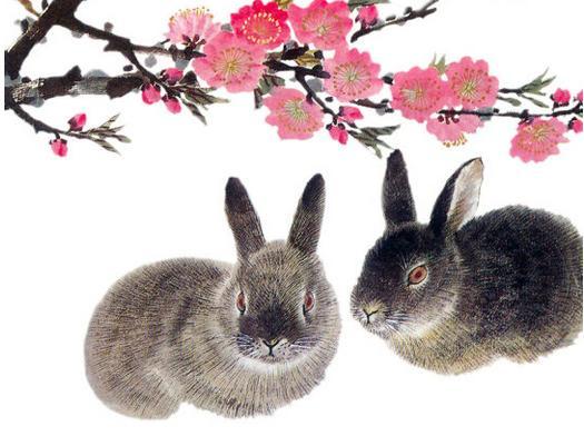 屬兔的卯時出生好不好- 星座網