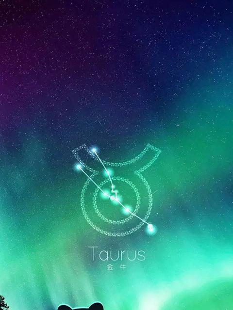 十二星座超美星空图片